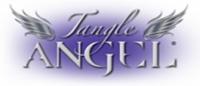 Расчески, брашинги, щетки Angel Расческа-ангел 19x9 см